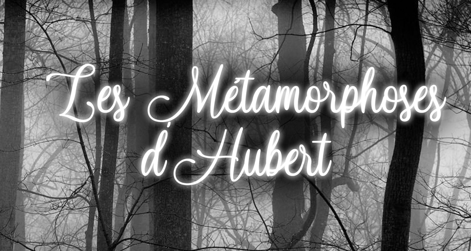 Spectacle – Les métamorphoses d'Hubert