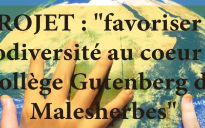 VOTEZ POUR GUTENBERG!