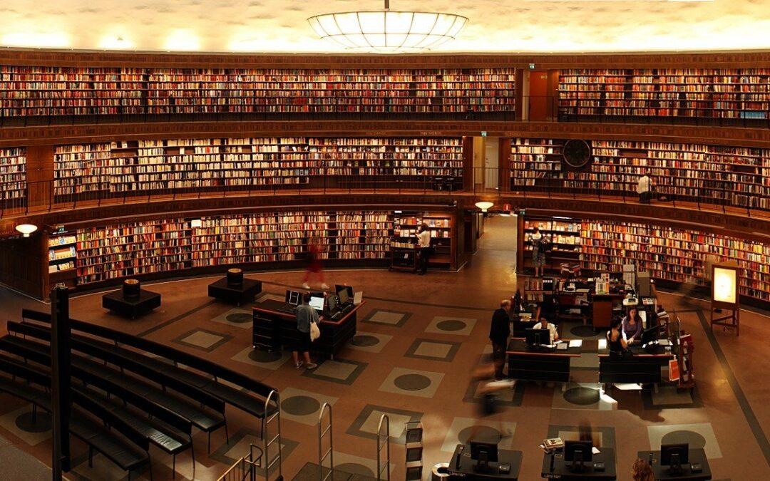 Des lectures, des découvertes et des activités … sans bouger de chez vous !
